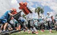 Come sono cambiatati i Miami Dolphins