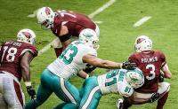 Cardinals bagnati e Dolphins fortunati 26-23 per Miami
